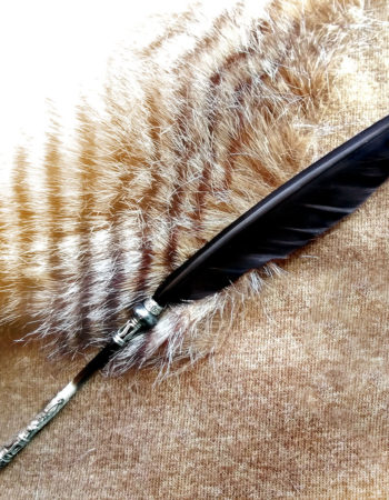 Metal Nib Tip Raven's Feather & Hematite Porcupine Quill Pen